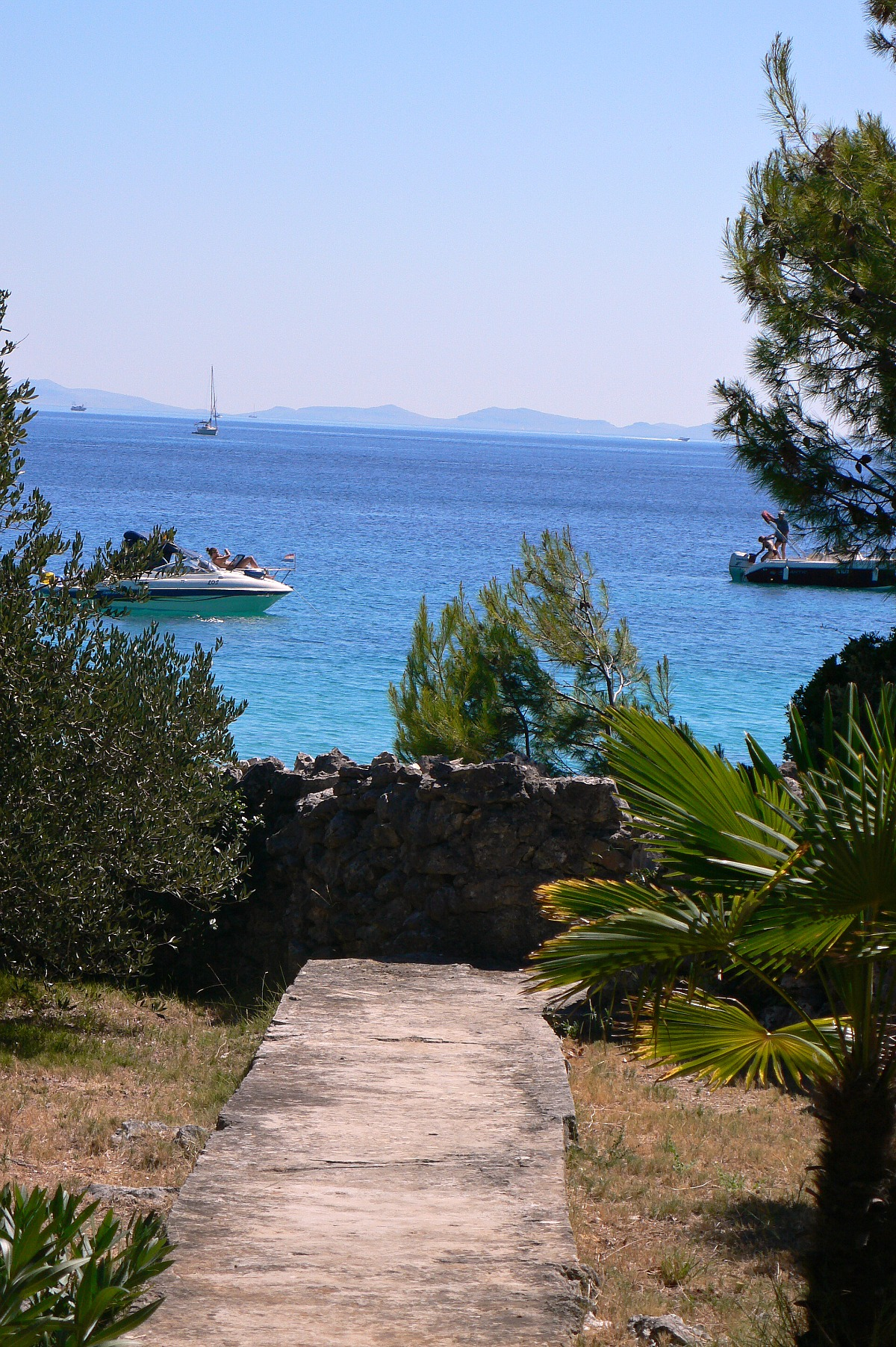 Ostrov Pašman